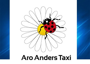Taxi luchthaventaxivervoer